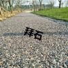 【供】上海拜石露骨料透水混凝土